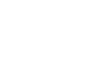 Icon Wachstum